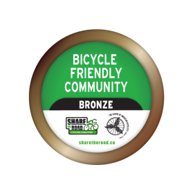 Graphic of a Bronze Badge for BFC