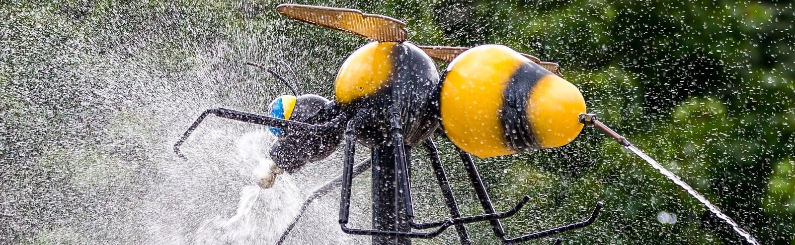 Bumble Bee Spraying Water