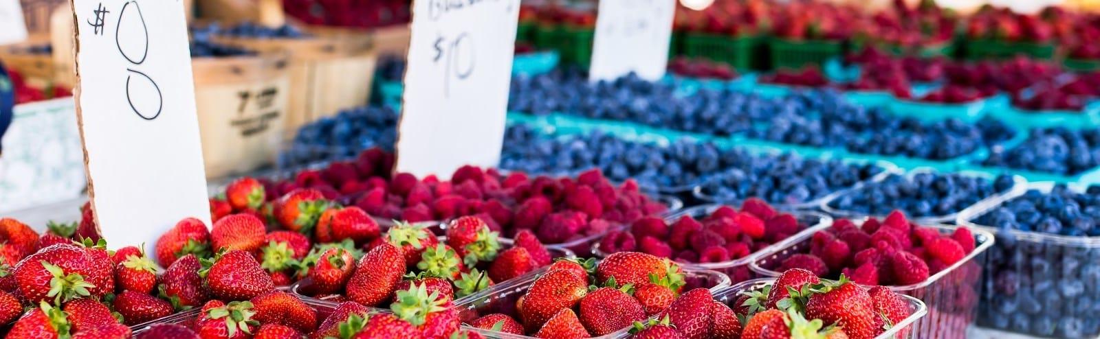 farmers market city of cambridge