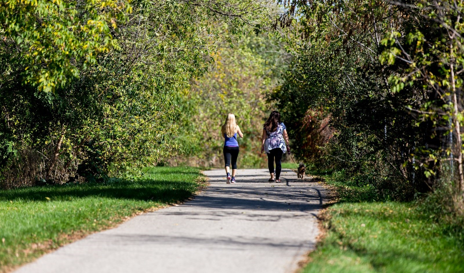 Walkers on a Cambridge Trail